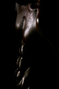 Male Nude Art Photos - Something Dark  by Mark Ashkenazi