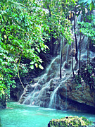 Miami River Photos - Sommerset Falls Jamaica by Carey Chen