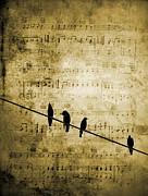 Andrea Kollo - Song Birds Music