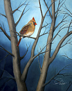 Bird Prints Paintings - SONG BIRDS - Northern Female Cardinal by Andrew Wells