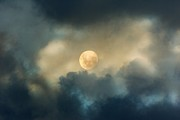 Night Photography Photos - Song To The Moon by Zeana Romanovna