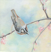 Tree Blossoms Painting Framed Prints - Songbird Framed Print by Natasha Denger