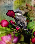 Flycatcher Metal Prints - Songs of Spring Metal Print by Betty LaRue