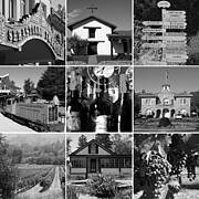 Wingsdomain Art and Photography - Sonoma County Wine Country 20140906 black and white