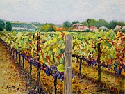 California Vineyard Painting Metal Prints - Sonoma Vineyard Metal Print by Ron Aucutt