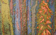 Printmaking Mixed Media - Sonoran Fantasy by Judith Rothenstein-Putzer