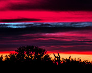 Jon Van Gilder - Sonoran Sunset Tucson...