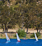 Boat Races Framed Prints - Soon It Will Be Spring Again Framed Print by Marie Jamieson