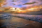 Topsail Island Posters - Soothing Sunrise Poster by Betsy A Cutler East Coast Barrier Islands