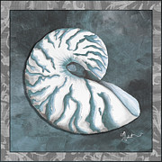 Sophisticated Coastal Art Original Sea Shell Painting Beachy Nautilus By Megan Duncanson Of Madart Print by Megan Duncanson