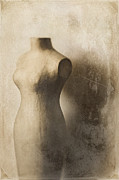 Torso Photo Acrylic Prints - Sophistication Acrylic Print by Amy Weiss