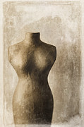 Figure Metal Prints - Sophistication II Metal Print by Amy Weiss