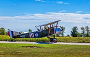 Camel Photos - Sopwith Camel by Steve Harrington