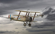 Biplane Framed Prints - Sopwith Triplane Framed Print by Pat Speirs