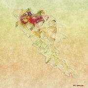 Soul In Flight Print by RC deWinter