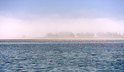 Daniel Furon - Soulscape Bodega Bay Iridescence