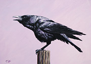 Raven Paintings - Sounding Off by Crista Forest