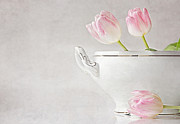 Soup Of Tulips Print by Claudia Moeckel