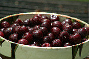 Sour Art - Sour cherries in a bowl by Emanuel Tanjala