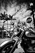 Black And White Photography Acrylic Prints - South Beach Cruiser Acrylic Print by David Bowman