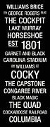 Garnet Posters - South Carolina College Town Wall Art Poster by Replay Photos