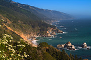 Big Sur Posters - South Coast View in Big Sur Poster by Charlene Mitchell