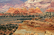 Called Prints - South Coyote Buttes 1 Print by Bob Christopher