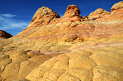 South Coyote Buttes 4 Print by Bob Christopher