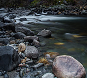 Moving Water - South Fork American River by Mitch Shindelbower