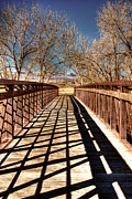 Denver Framed Prints - South Platte River Bridge Framed Print by David Patterson