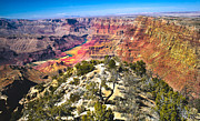 American Photograph Framed Prints - South Rim From The Butte Framed Print by Robert Bales