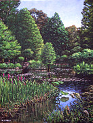 Featured Art - Southampton Hillier Gardens by Martin Davey