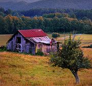 Old Barns Photo Prints - Southern Belle - Wears Valley Print by Thomas Schoeller