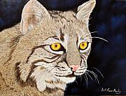 """bobcat "" Paintings - Southern Bobcat by April Moseley"