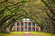 Oak Alley Plantation Photo Prints - Southern Class Print by Steve Harrington