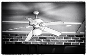 Fan Acrylic Prints - Southern Fan Acrylic Print by John Rizzuto