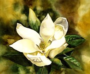 Featured Painting Originals - Southern Magnolia by Alfred Ng