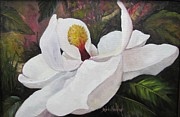 Southern Magnolia Print by Barbara Haviland