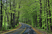 Chuck Kuhn - Southern Roads