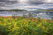 New England Village Prints - Southwest Harbor Summer Flowers Print by Robert Saccomanno