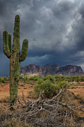The Superstitions Prints - Southwest Monsoon Skies  Print by Saija  Lehtonen