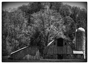 White Barn Photos - Southwest Wisconsin Barn Black and White by Thomas Young