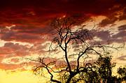 Saija  Lehtonen - Southwestern Skies