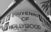 Hollywood  Framed Prints - Souvenirs Framed Print by Dan Holm