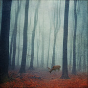 Dirk Wuestenhagen - Space Of Deer