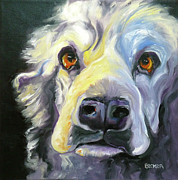 Oil Drawings Originals - Spaniel in Thought by Susan A Becker