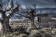 Abandoned Houses Metal Prints - Spanish Desert Metal Print by Heiko Koehrer-Wagner