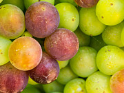 Justin Woodhouse - Spanish Grapes Macro