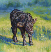 Black Angus Framed Prints - Spanky Framed Print by Denise Horne-Kaplan