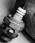 Spark Plug  1 Print by Wilma  Birdwell